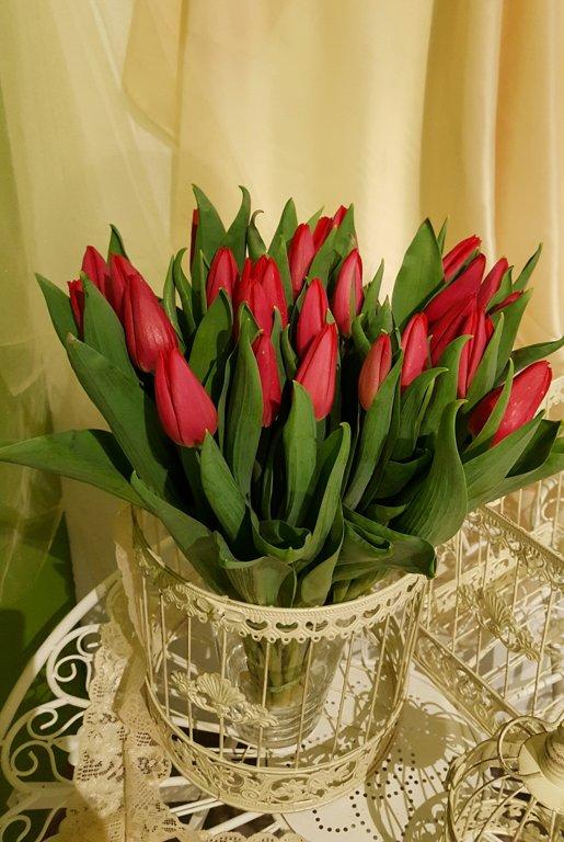 Tulpes sarkanas