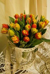 Tulpes dzelten oranžas- pildītās